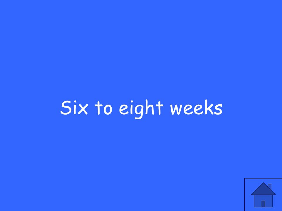 Six to eight weeks
