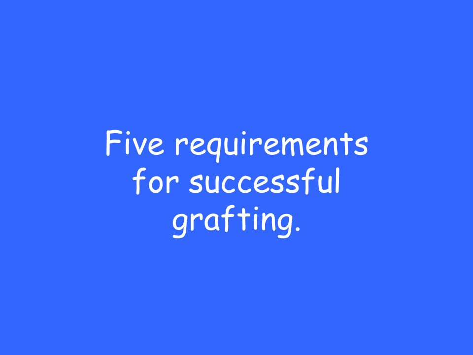 Five requirements for successful grafting.