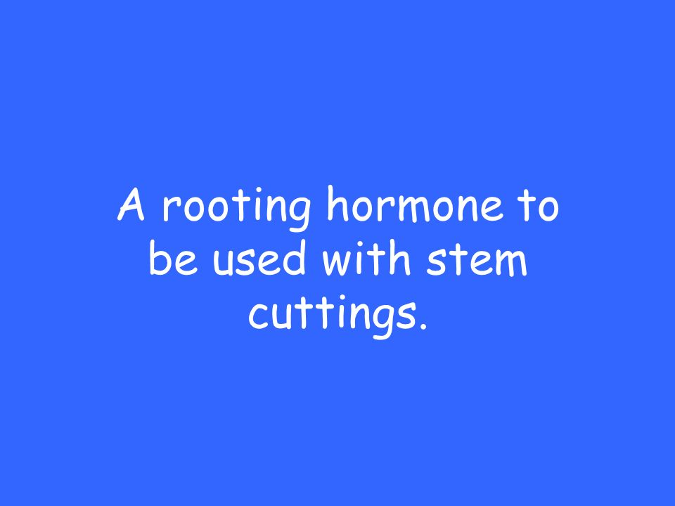 A rooting hormone to be used with stem cuttings.