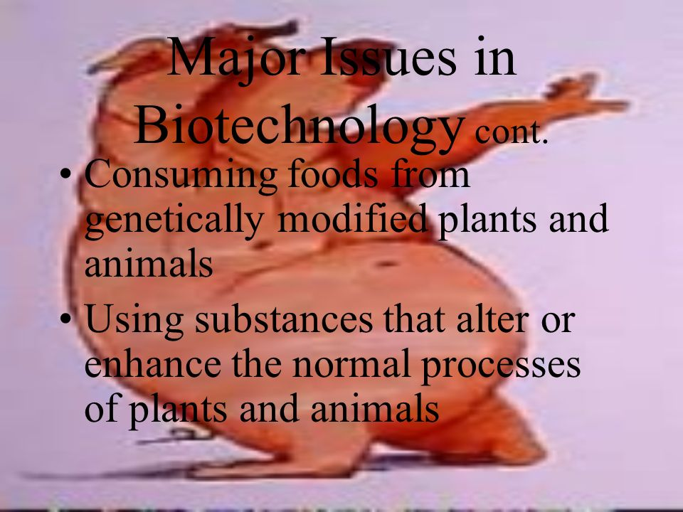 Major Issues in Biotechnology Changing the genetic material of an organism using artificial means Planting genetically modified plants Raising genetically modified animals