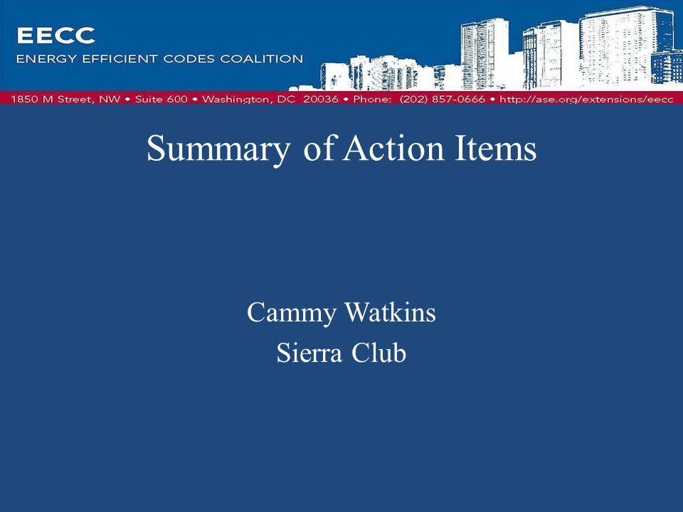 Summary of Action Items Cammy Watkins Sierra Club