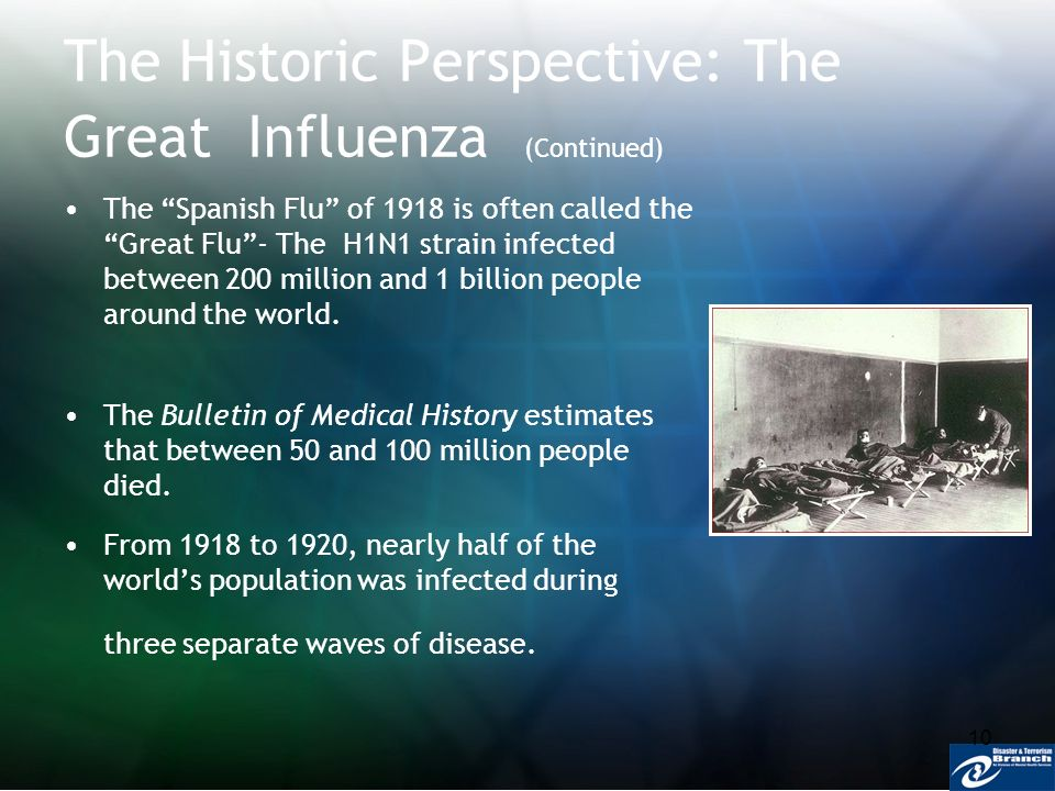 10 The Historic Perspective: The Great Influenza (Continued) The Spanish Flu of 1918 is often called the Great Flu- The H1N1 strain infected between 2