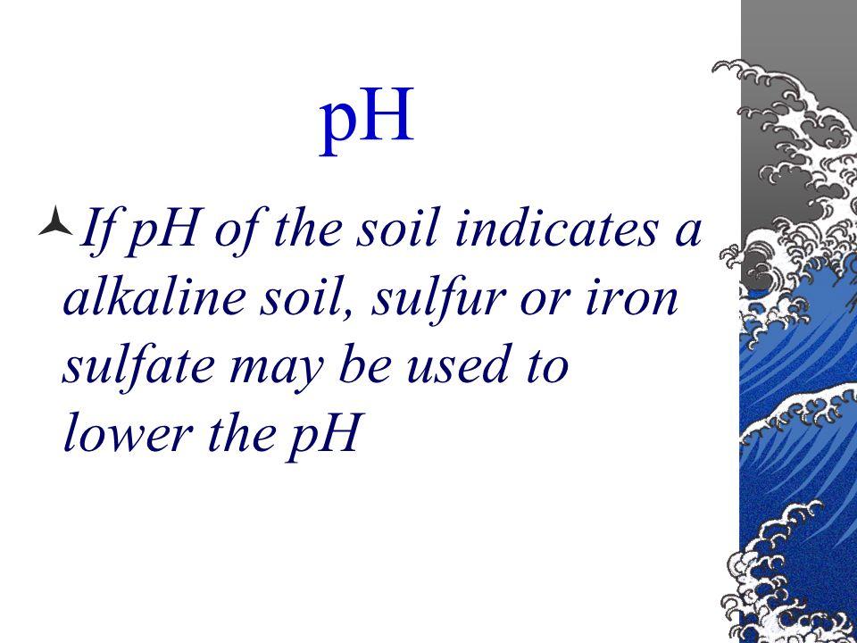 Lime Calcium Carbonate Calcium Oxide Calcium Hydroxide