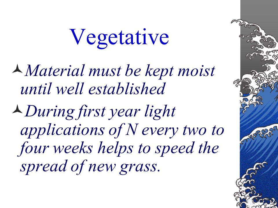 Vegetative Zoysia, Bermuda Grass, Centipede Grass, Creeping Bentgrass and Velvet Bentgrass