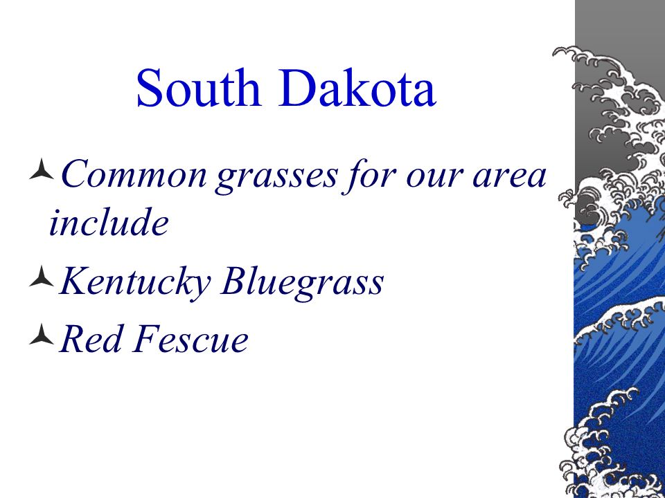 Geographical regions US is divided into six regions with respect to the best types of grasses South Dakota falls in regions 1 and 4