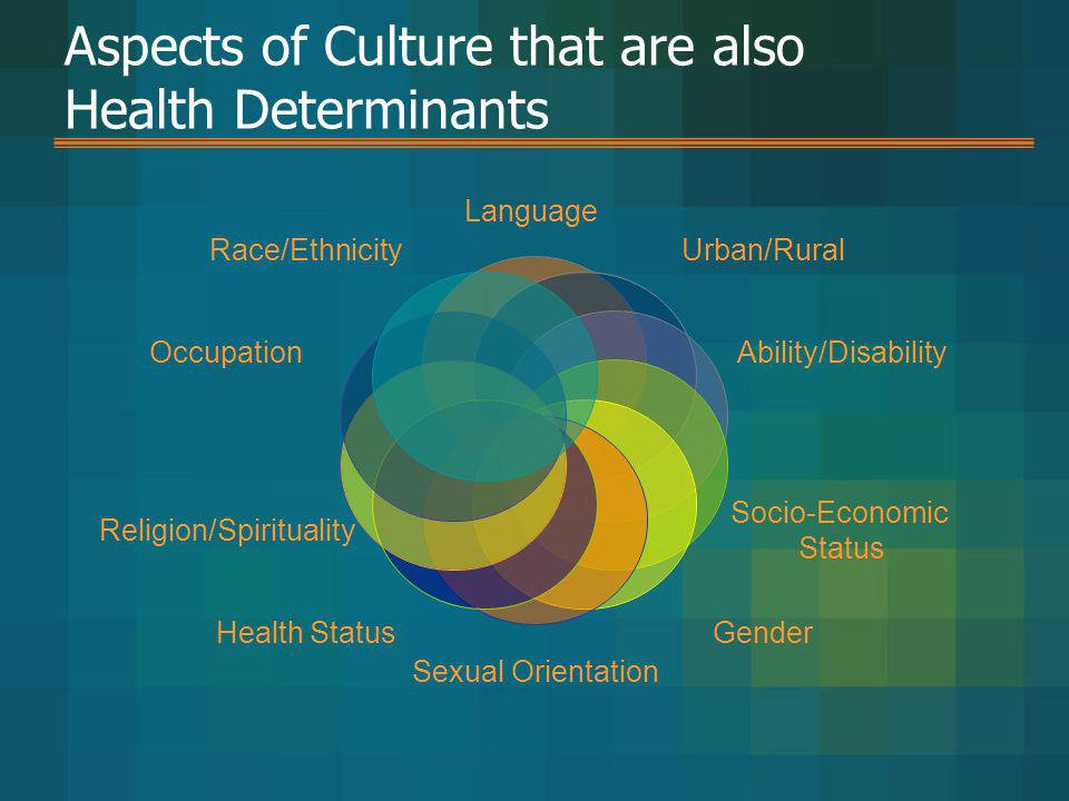 Aspects of Culture that are also Health Determinants Language Urban/Rural Ability/Disability Socio-Economic Status Gender Sexual Orientation Health St
