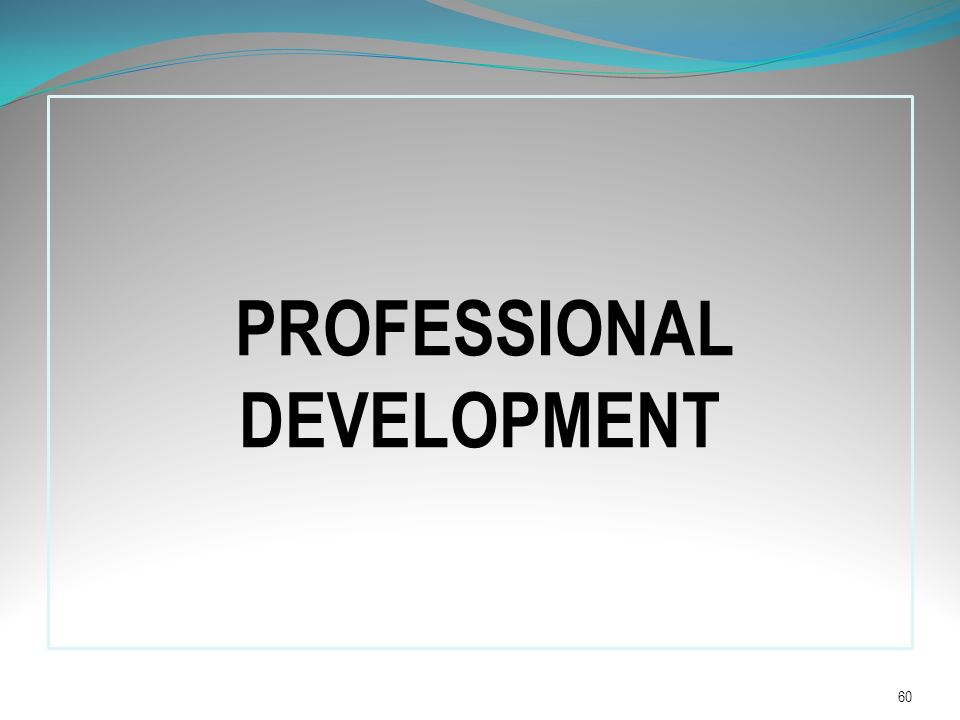 PROFESSIONAL DEVELOPMENT 60