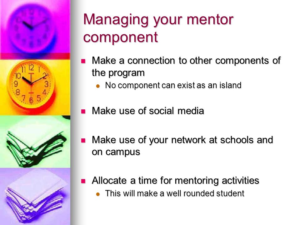 Managing your mentor component Make a connection to other components of the program Make a connection to other components of the program No component