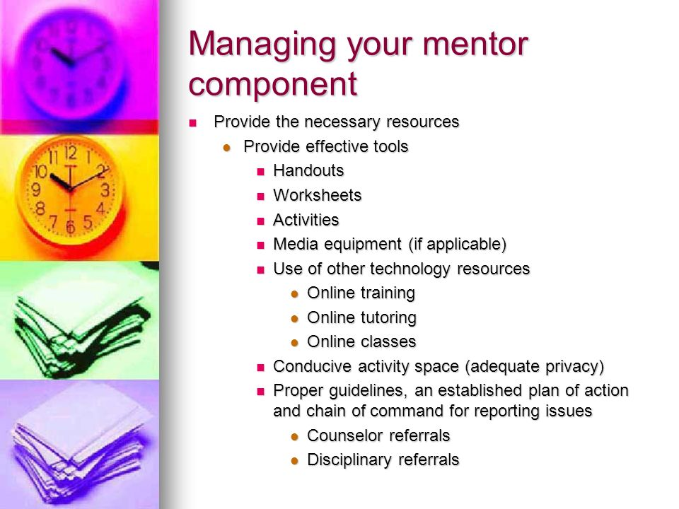 Managing your mentor component Provide the necessary resources Provide the necessary resources Provide effective tools Provide effective tools Handout