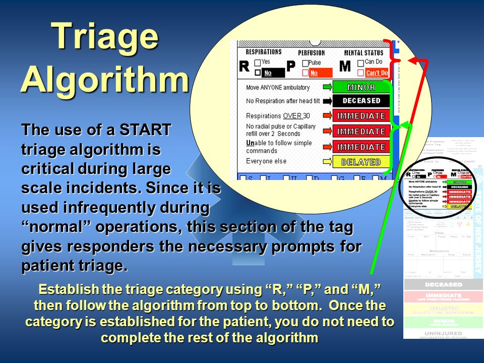 Component 2: The Body of the Triage Tag The main body of the tag is to be completed by the EMS professional. This section will stay with the patient.