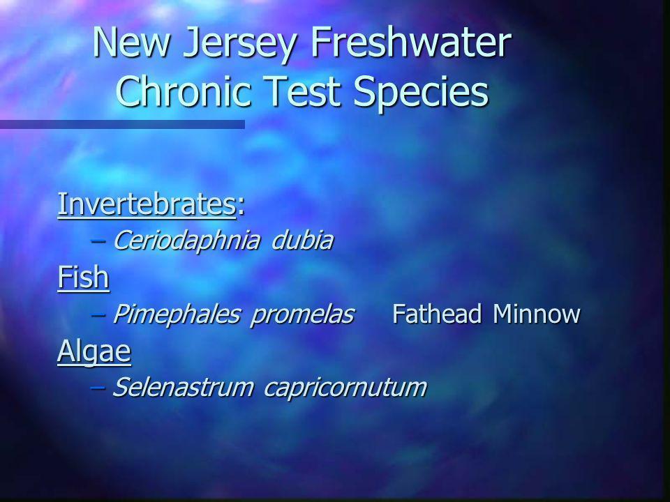 New Jersey Freshwater Chronic Test Species Invertebrates: –Ceriodaphnia dubia Fish –Pimephales promelas Fathead Minnow Algae –Selenastrum capricornutu