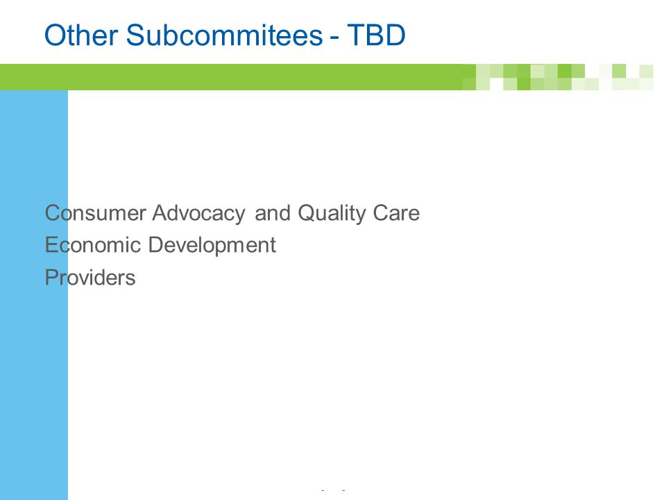 - Other Subcommitees - TBD Consumer Advocacy and Quality Care Economic Development Providers