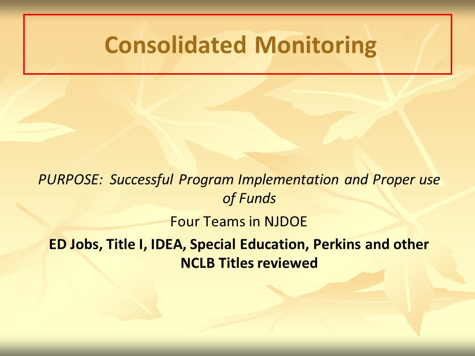 Consolidated Monitoring PURPOSE: Successful Program Implementation and Proper use of Funds Four Teams in NJDOE ED Jobs, Title I, IDEA, Special Education, Perkins and other NCLB Titles reviewed