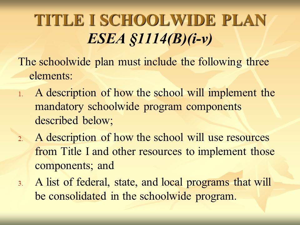 TITLE I SCHOOLWIDE PLAN TITLE I SCHOOLWIDE PLAN ESEA §1114(B)(i-v) The schoolwide plan must include the following three elements: 1.