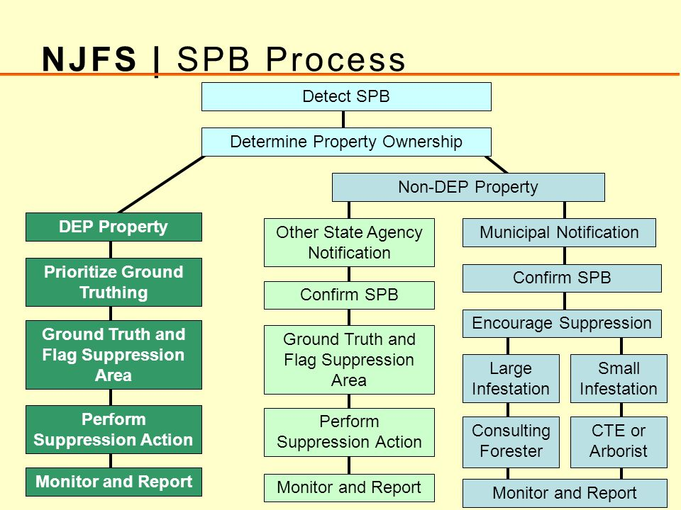 Detect SPB DEP Property Determine Property Ownership Prioritize Ground Truthing Non-DEP Property Confirm SPB Municipal Notification Ground Truth and F