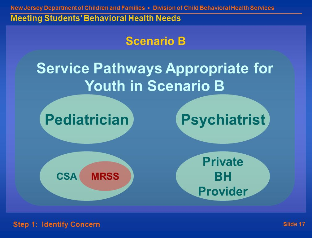 Slide 17 New Jersey Department of Children and Families Division of Child Behavioral Health Services Meeting Students Behavioral Health Needs Scenario