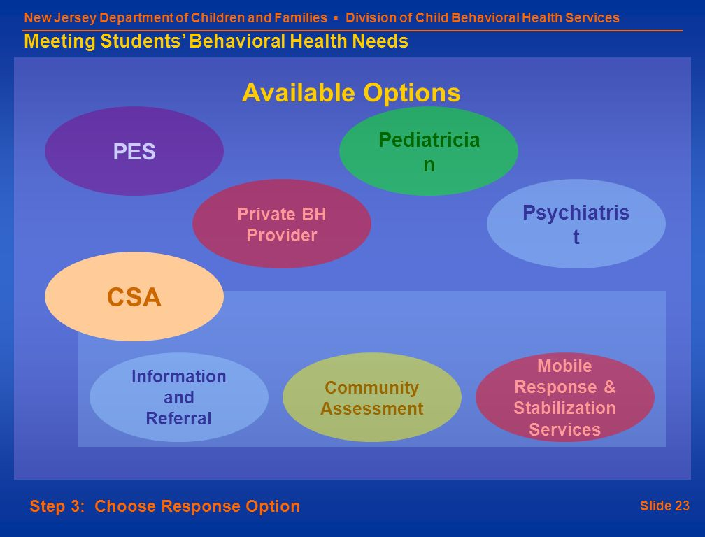Slide 23 New Jersey Department of Children and Families Division of Child Behavioral Health Services Meeting Students Behavioral Health Needs Step 3: Choose Response Option Available Options PES Psychiatris t Community Assessment Pediatricia n Mobile Response & Stabilization Services CSA Information and Referral Private BH Provider