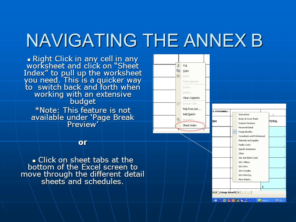 NAVIGATING THE ANNEX B Right Click in any cell in any worksheet and click on Sheet Index to pull up the worksheet you need. This is a quicker way to s