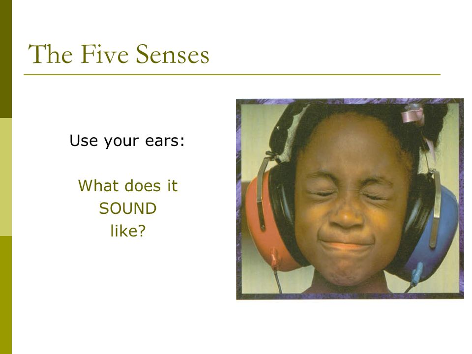 The Five Senses Use your ears: What does it SOUND like?