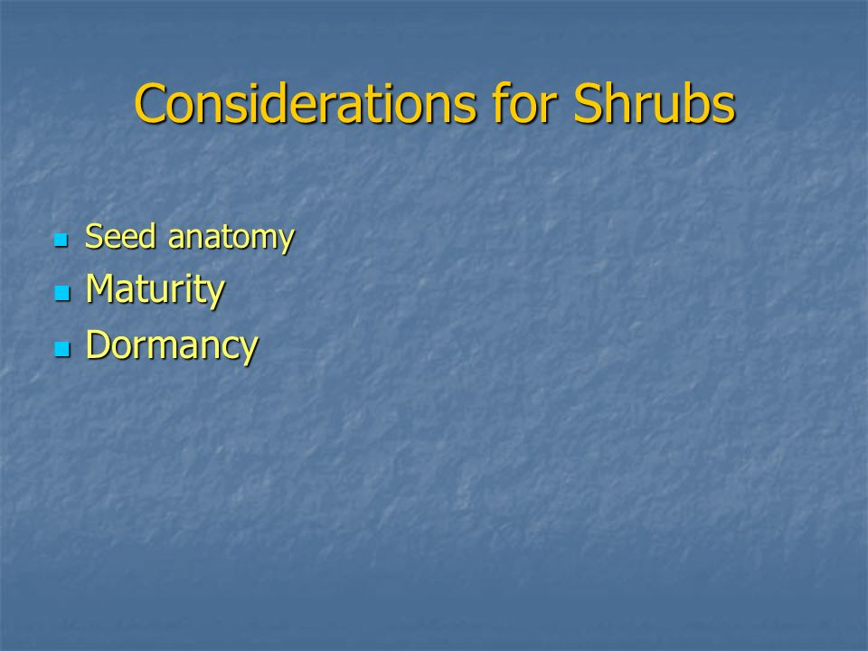 Considerations for Shrubs Seed anatomy Seed anatomy Maturity Maturity Dormancy Dormancy