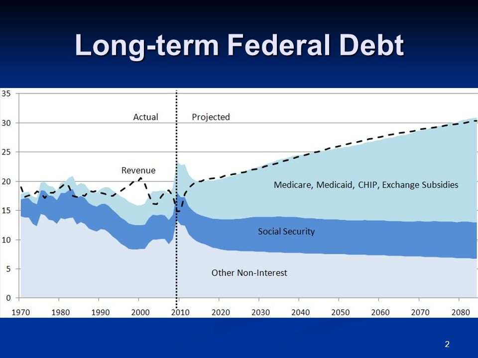 Long-term Federal Debt 2