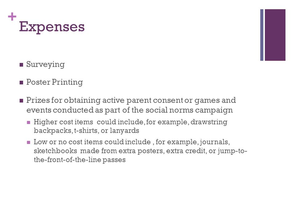 + Expenses Surveying Poster Printing Prizes for obtaining active parent consent or games and events conducted as part of the social norms campaign Higher cost items could include, for example, drawstring backpacks, t-shirts, or lanyards Low or no cost items could include, for example, journals, sketchbooks made from extra posters, extra credit, or jump-to- the-front-of-the-line passes
