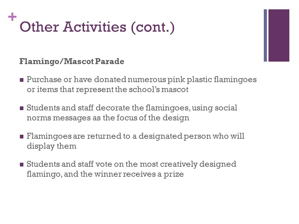 + Other Activities (cont.) Flamingo/Mascot Parade Purchase or have donated numerous pink plastic flamingoes or items that represent the schools mascot Students and staff decorate the flamingoes, using social norms messages as the focus of the design Flamingoes are returned to a designated person who will display them Students and staff vote on the most creatively designed flamingo, and the winner receives a prize