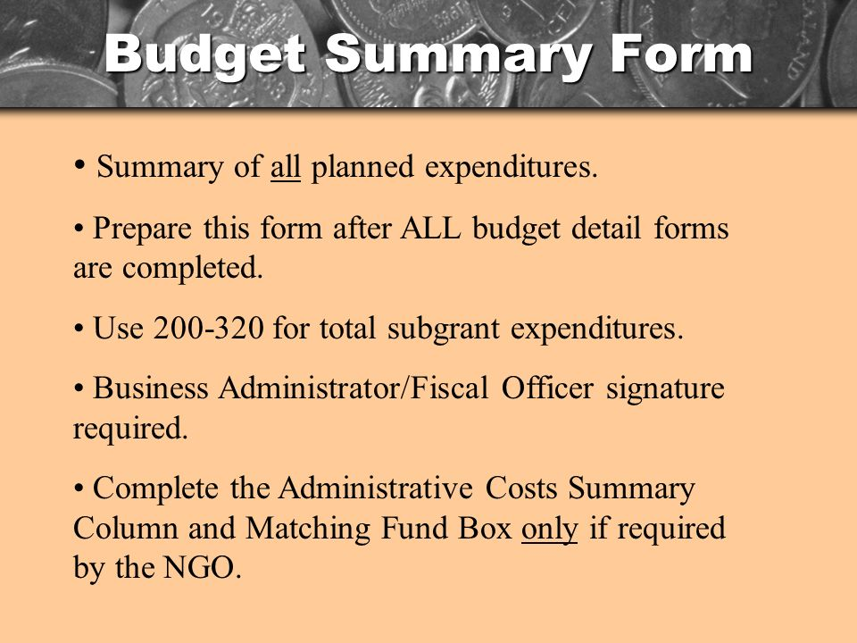 Budget Summary Form Summary of all planned expenditures.