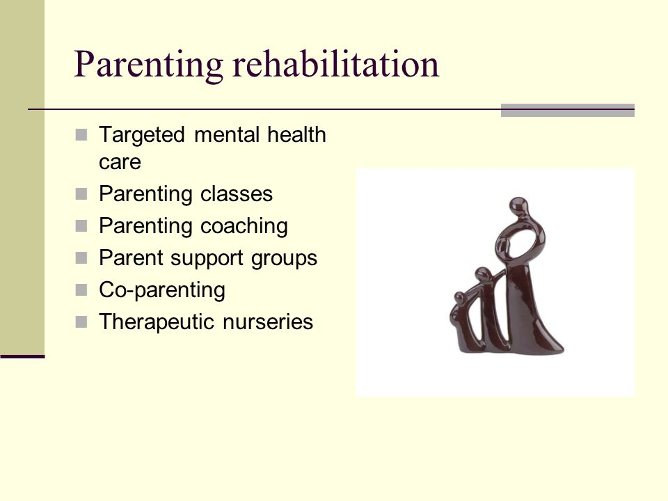 Parenting rehabilitation Targeted mental health care Parenting classes Parenting coaching Parent support groups Co-parenting Therapeutic nurseries