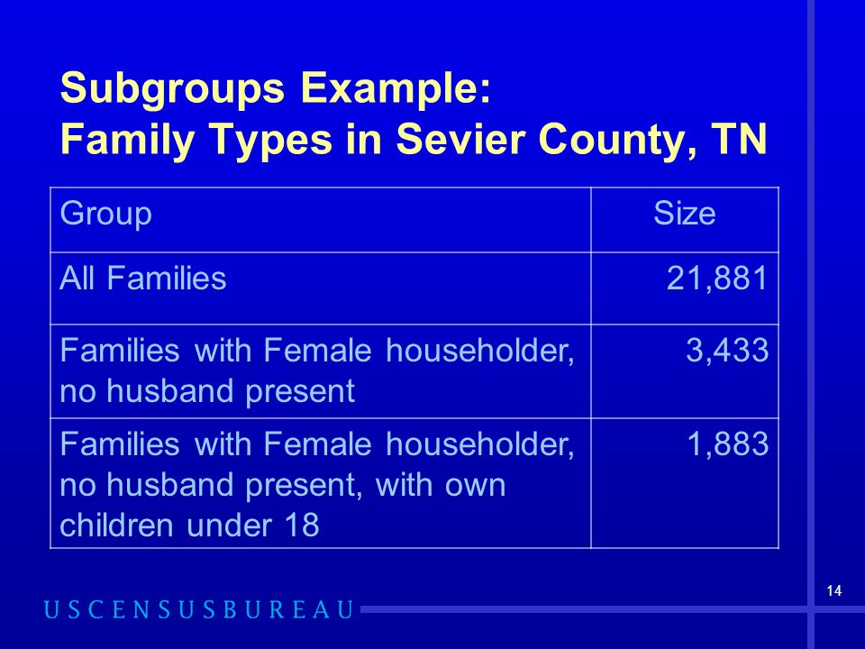14 Subgroups Example: Family Types in Sevier County, TN GroupSize All Families21,881 Families with Female householder, no husband present 3,433 Famili