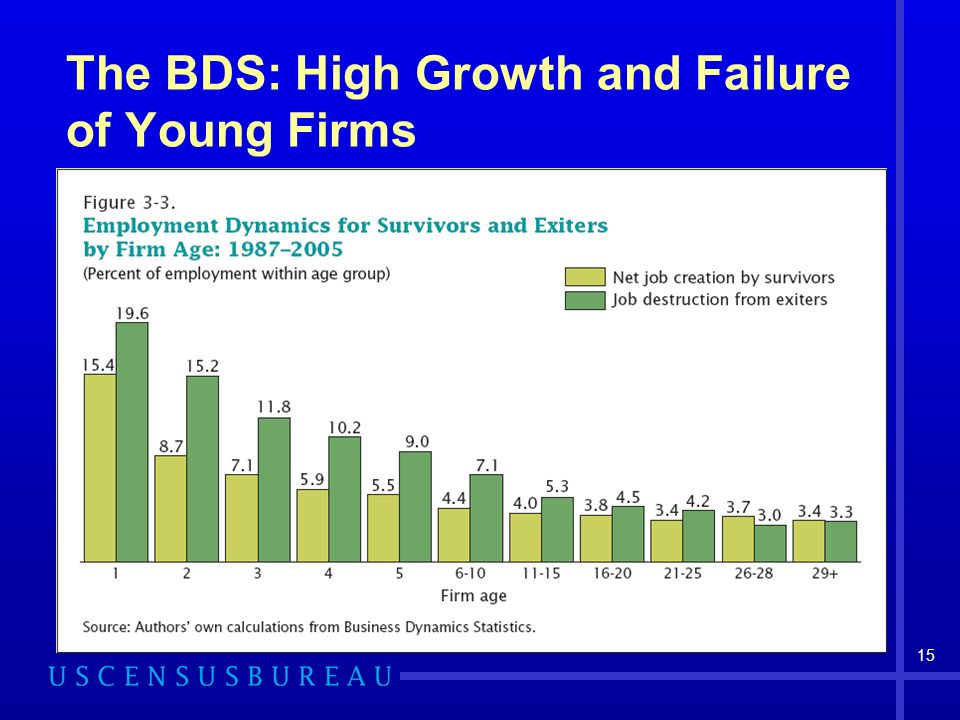 15 The BDS: High Growth and Failure of Young Firms