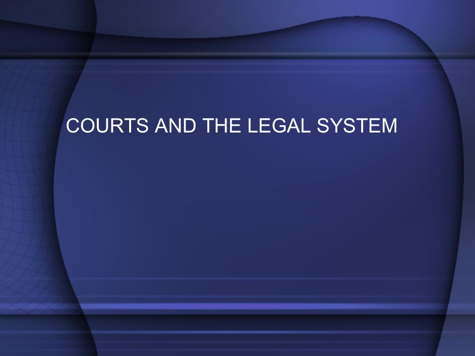 COURTS AND THE LEGAL SYSTEM