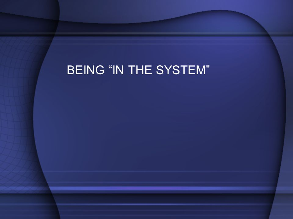 BEING IN THE SYSTEM