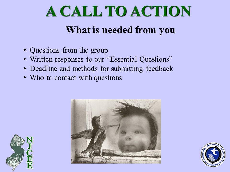 What is needed from you A CALL TO ACTION A CALL TO ACTION Questions from the group Written responses to our Essential Questions Deadline and methods for submitting feedback Who to contact with questions