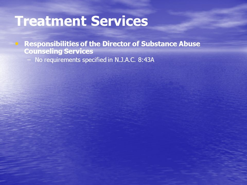 Treatment Services Responsibilities of the Director of Substance Abuse Counseling Services –No requirements specified in N.J.A.C. 8:43A