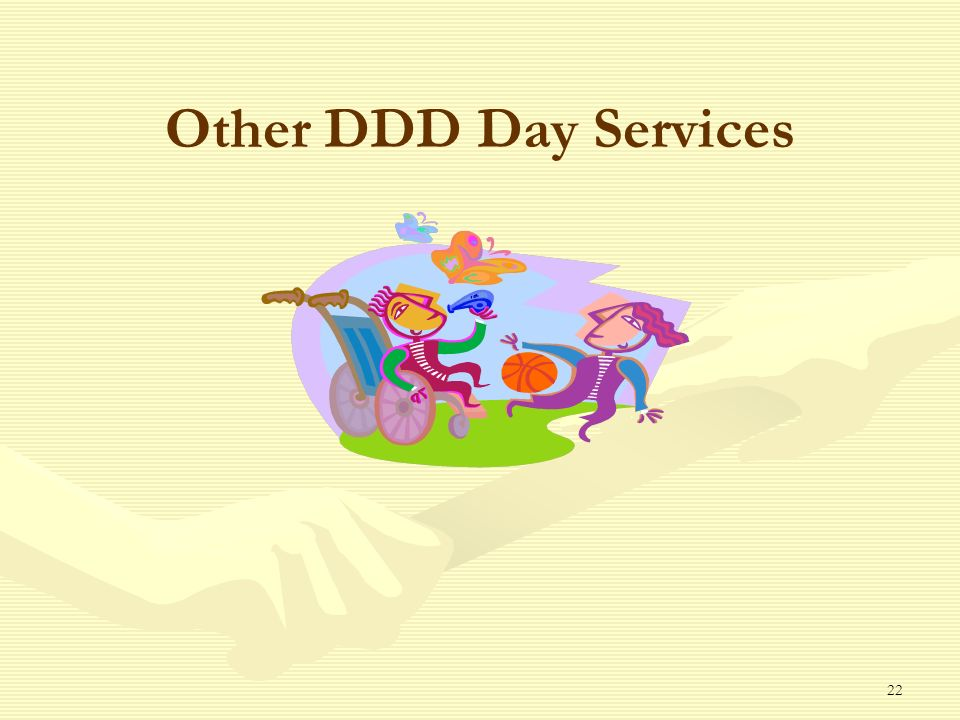 22 Other DDD Day Services
