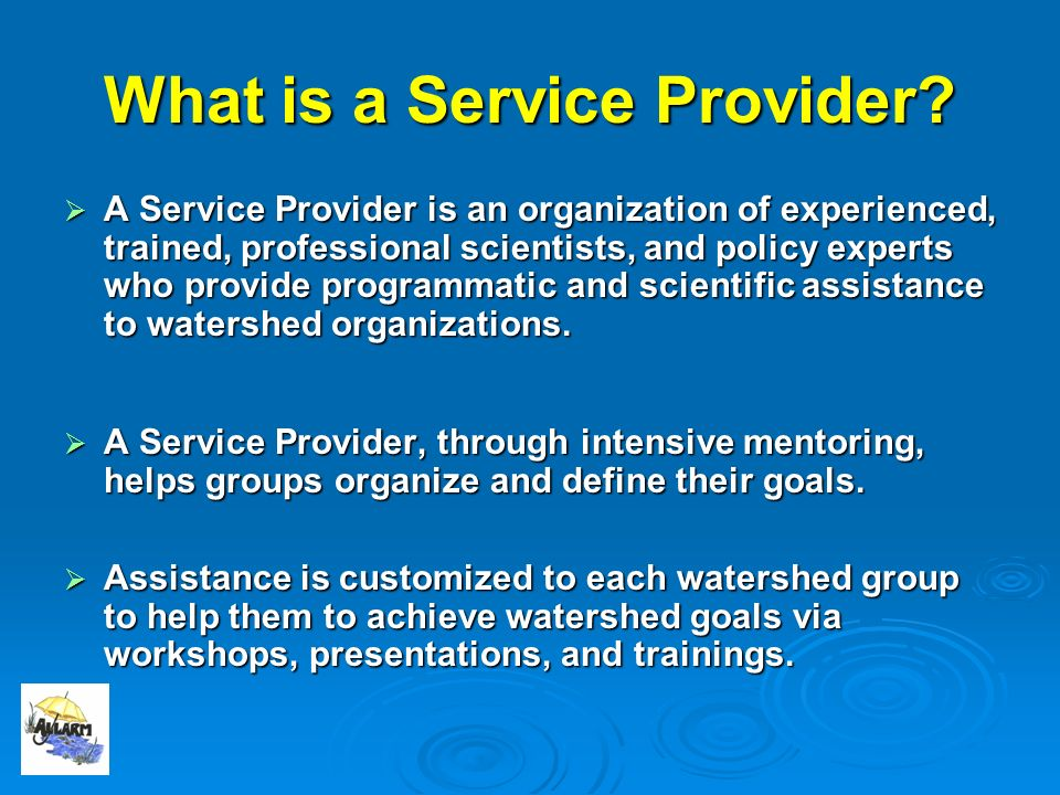 What is a Service Provider.