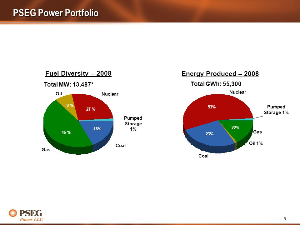 5 53% 23% 22% Oil 1% Pumped Storage 1% Nuclear Coal Gas Total GWh: 55,300 18% 46 % 8 % 27 % Coal Gas Oil Nuclear Pumped Storage 1% Total MW: 13,487* PSEG Power Portfolio Fuel Diversity – 2008 Energy Produced – 2008