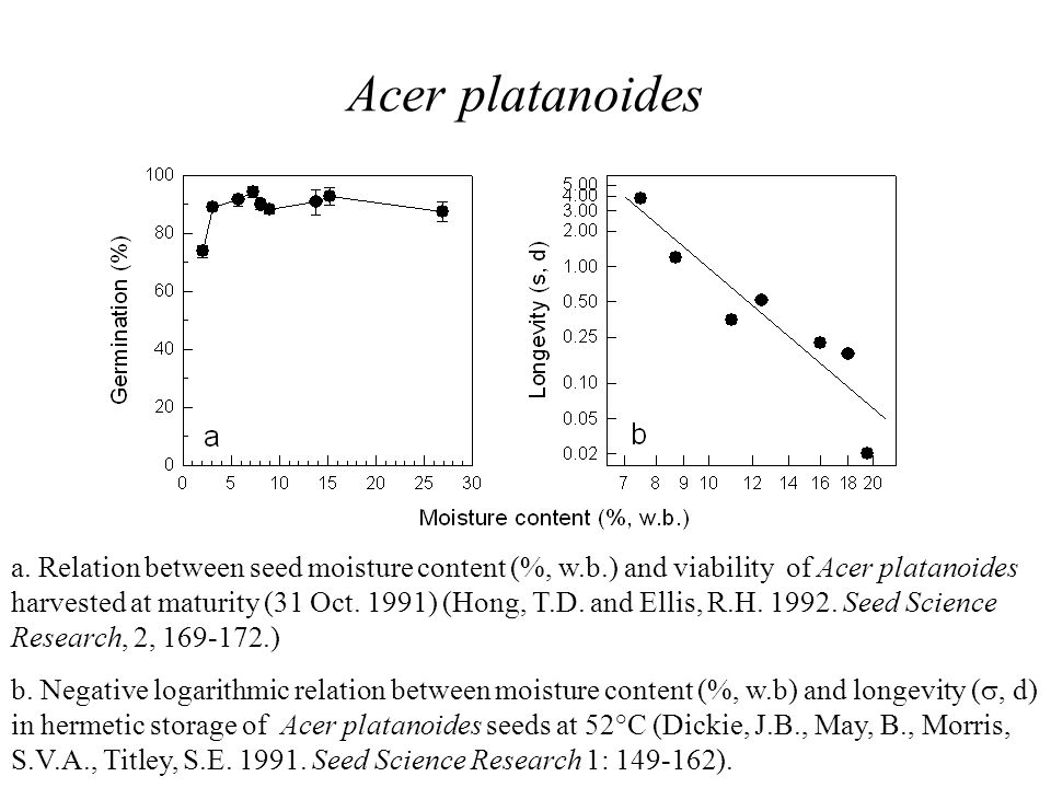 Acer platanoides a. Relation between seed moisture content (%, w.b.) and viability of Acer platanoides harvested at maturity (31 Oct. 1991) (Hong, T.D