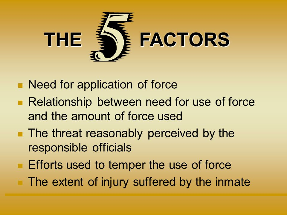 Need for application of force Relationship between need for use of force and the amount of force used The threat reasonably perceived by the responsible officials Efforts used to temper the use of force The extent of injury suffered by the inmate THEFACTORS