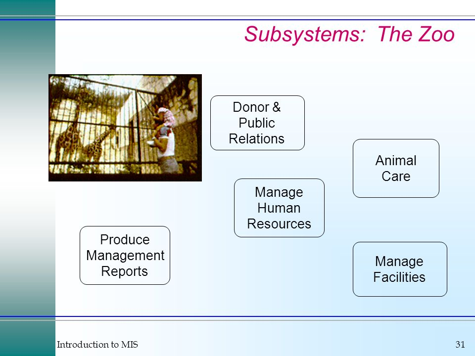 Introduction to MIS31 Subsystems: The Zoo Animal Care Donor & Public Relations Manage Facilities Produce Management Reports Manage Human Resources