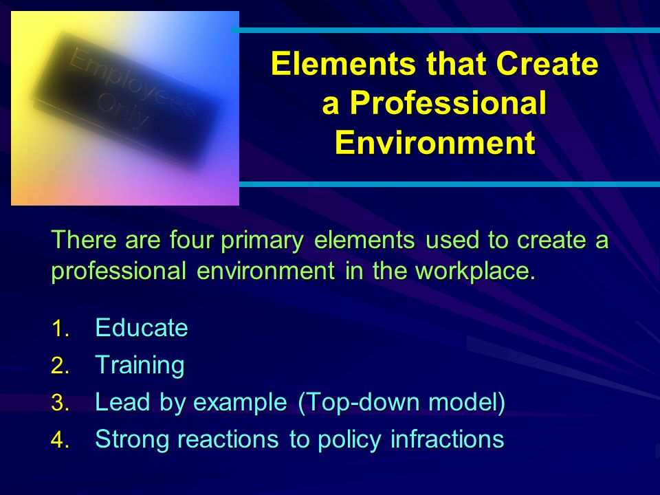 Elements that Create a Professional Environment 1.