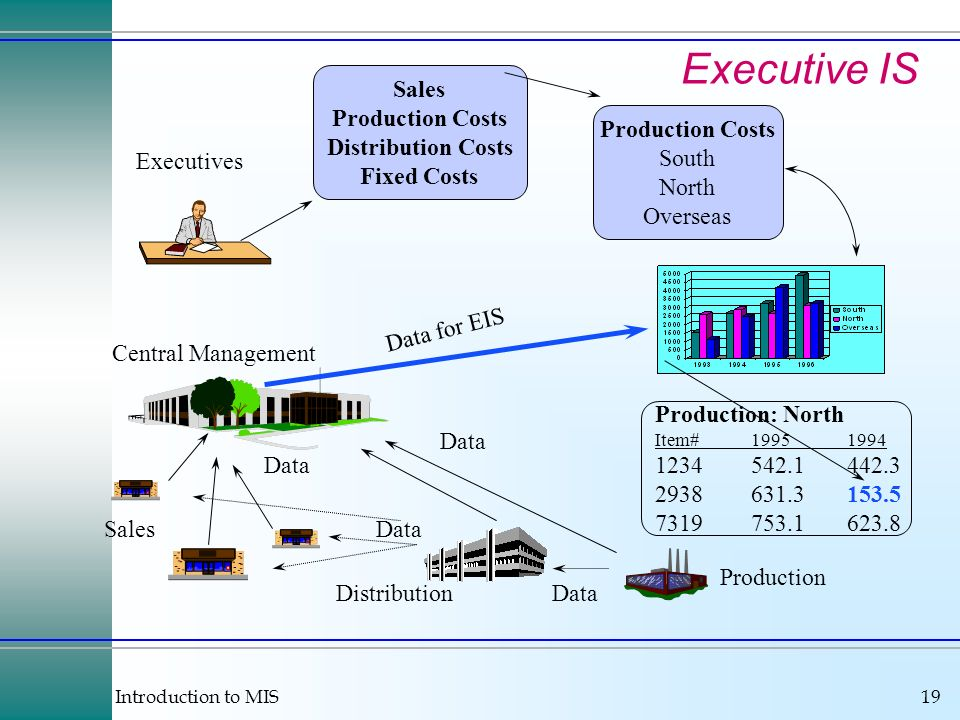 Introduction to MIS19 Executive IS Production Distribution Sales Central Management Executives Data Sales Production Costs Distribution Costs Fixed Costs Production Costs South North Overseas Production: North Item# Data for EIS Data