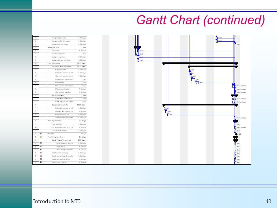 Introduction to MIS43 Gantt Chart (continued)