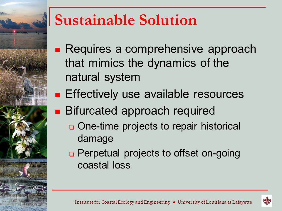 Institute for Coastal Ecology and Engineering University of Louisiana at Lafayette Sustainable Solution Requires a comprehensive approach that mimics