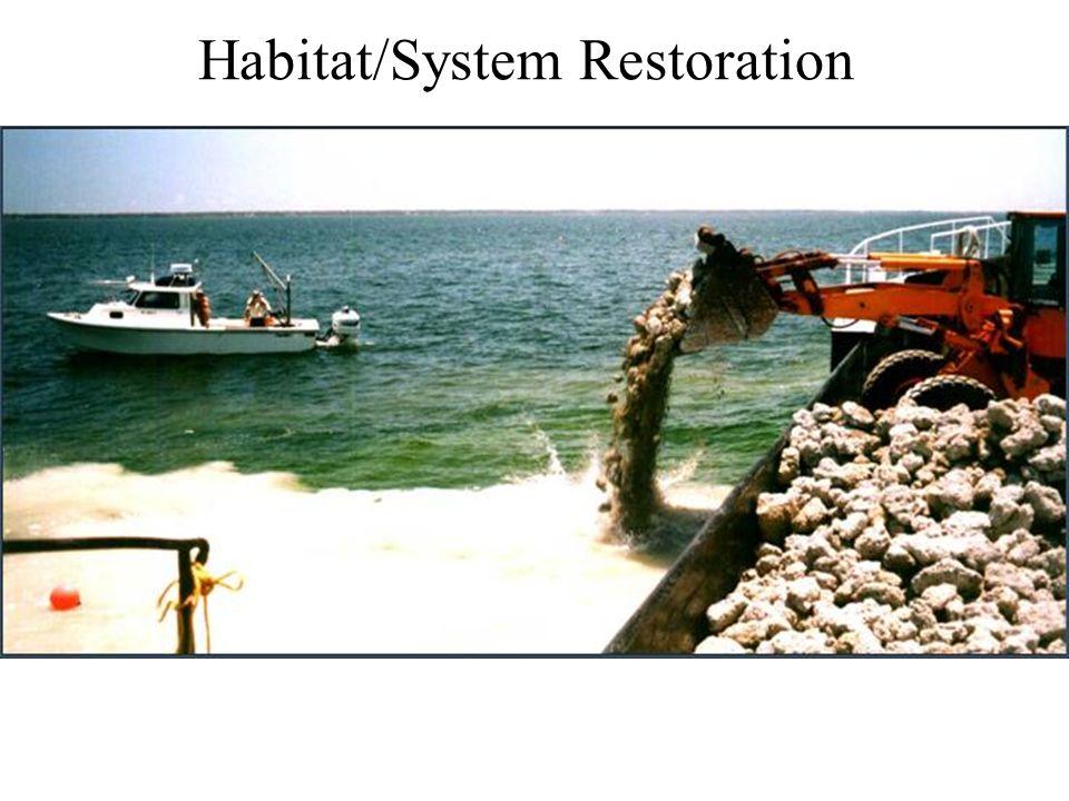 Habitat/System Restoration