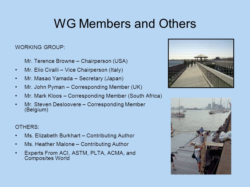 WG Members and Others WORKING GROUP: Mr. Terence Browne – Chairperson (USA) Mr.