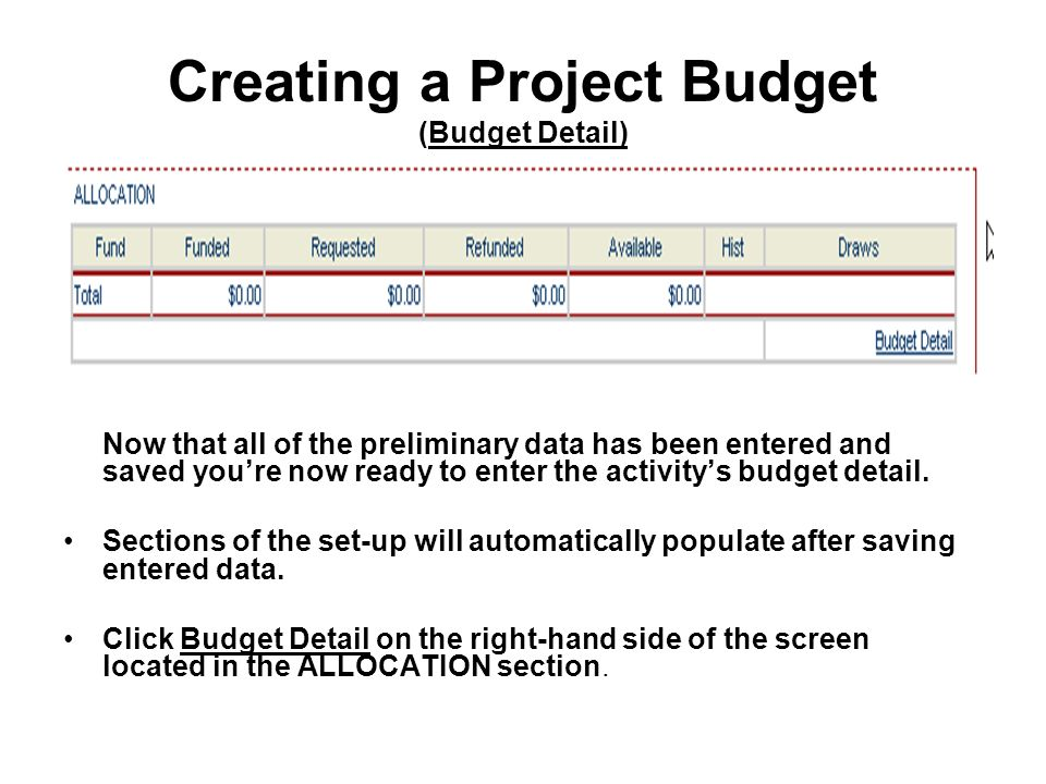 Creating a Project Budget (Budget Detail) Now that all of the preliminary data has been entered and saved youre now ready to enter the activitys budget detail.