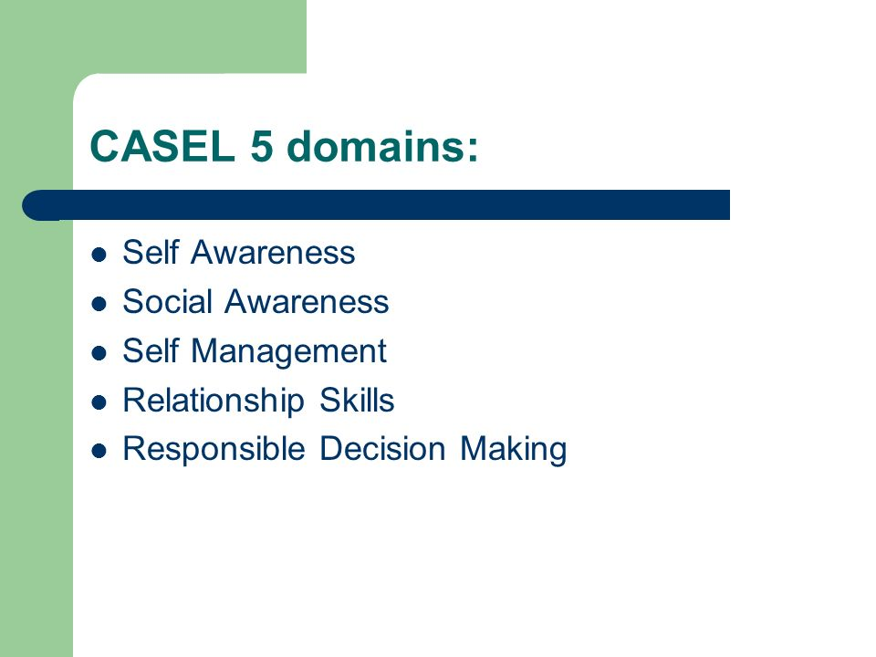 CASEL 5 domains: Self Awareness Social Awareness Self Management Relationship Skills Responsible Decision Making