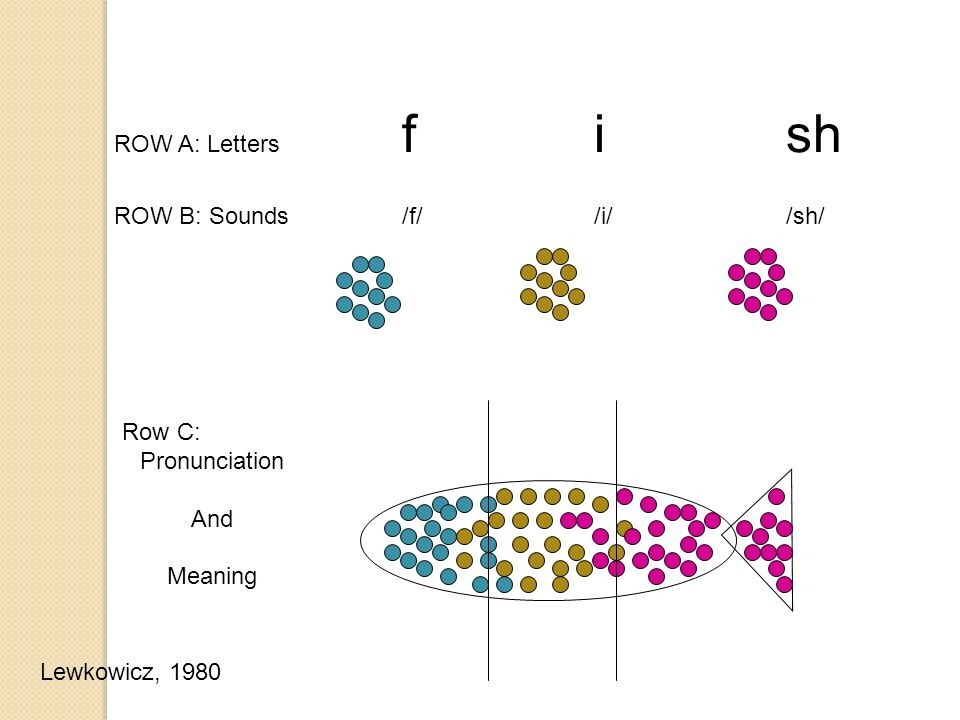 ROW A: Letters fish ROW B: Sounds /f//i//sh/ Row C: Pronunciation And Meaning Lewkowicz, 1980
